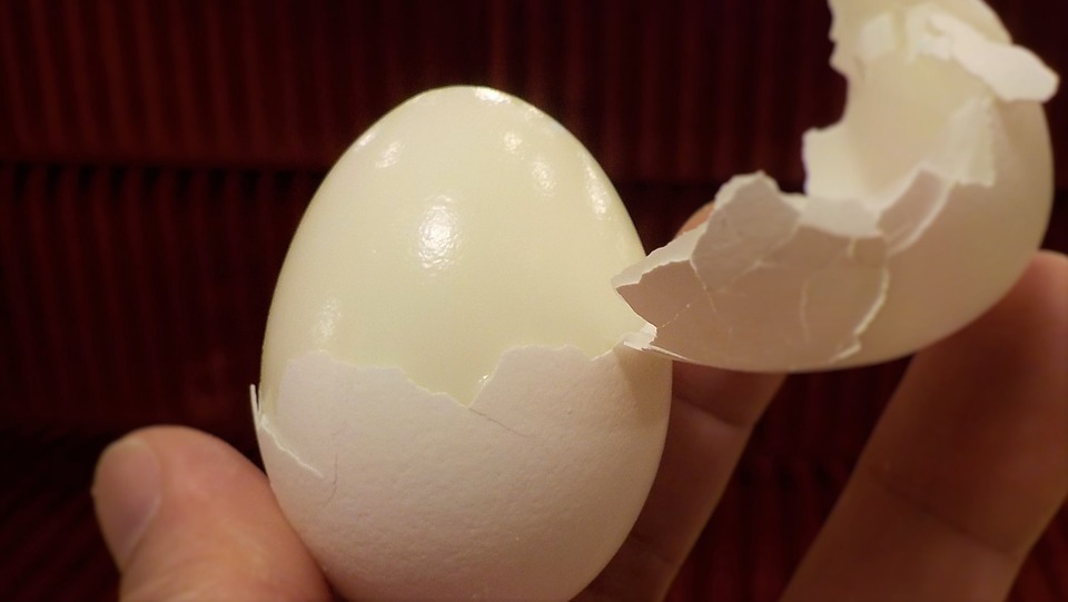 Hard Boiled Egg for Gamer