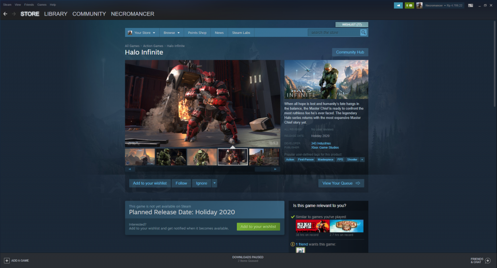 Halo Infinite Steam